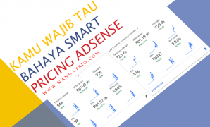 smart pricing adsense