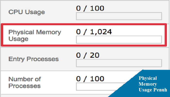 physical memory usage cpanel