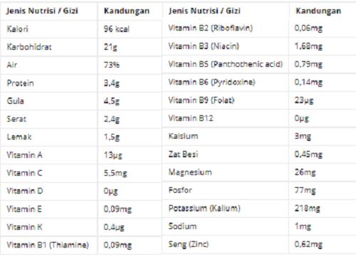 kandungan nutrisi jagung