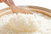 manfaat nasi putih untuk ayam bangkok